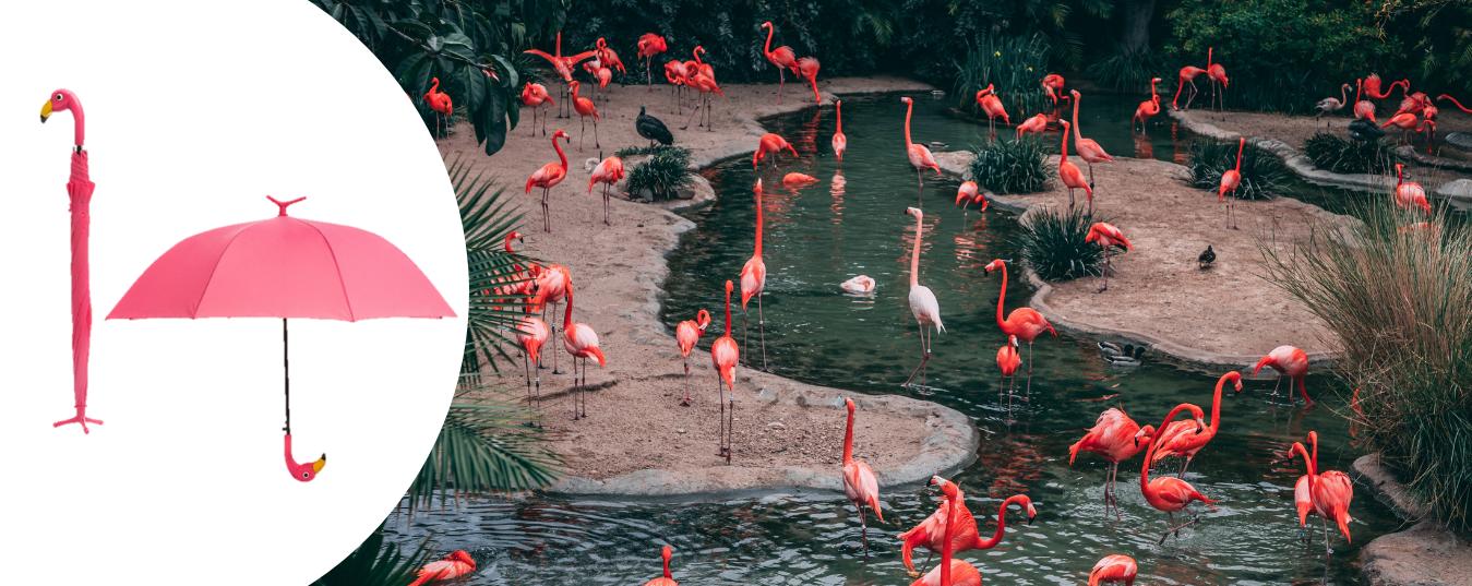 Guarda-Chuva Flamingo
